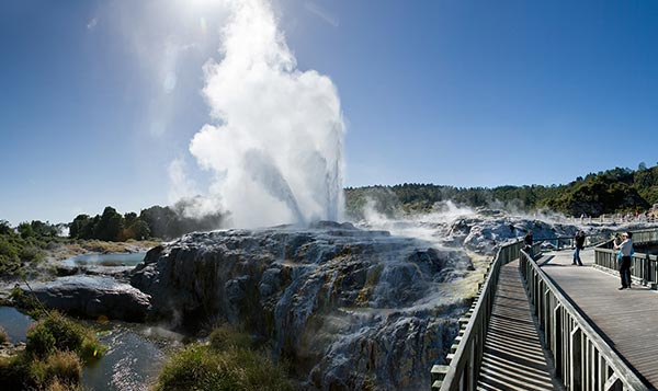 North Island Escorted Tours