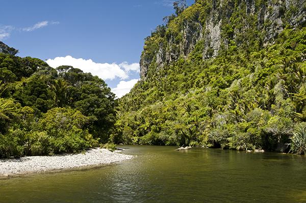 Pororai River